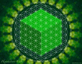 Cube-Hexahedron Flower of Life